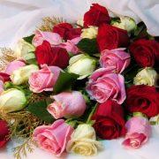 اشنای با کار برد گل ها
