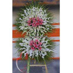 PT010-گل شقایق