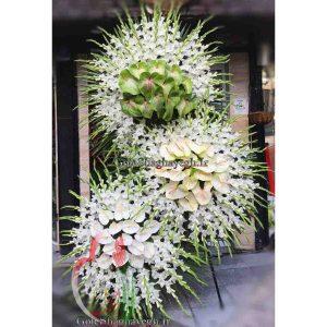 پایه گل